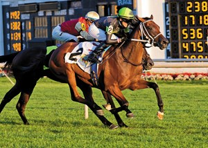 Fault wins the Pucker Up Stakes at Arlington International Racecourse