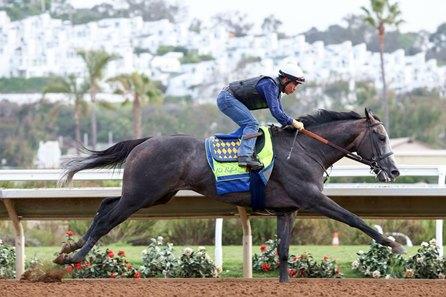 Arrogate Puts In Final Work For Pacific Classic Bloodhorse