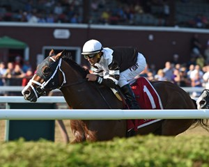 Blind Ambition winning the Quick Call Stakes at Saratoga
