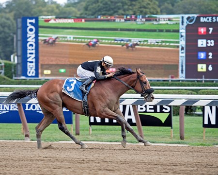 Aveenu Malcainu with Luis Saez wins the 2017 Funny Cide at Saratoga racecourse in Saratoga Springs, N.Y. on Aug. 25, 2017