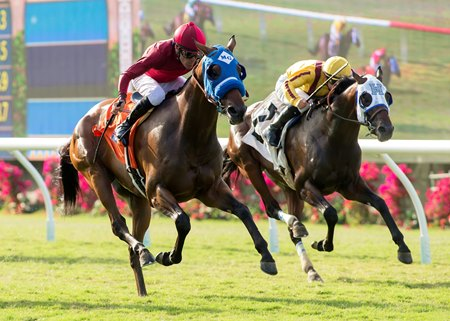 Sharp Samurai wins the 2017 La Jolla Handicap (G3T)