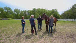 U.S. Marine Corp. veteran Sgt. Matt Ryba visiting with ex-racehorse Crafty at the Bergen Equestrian Center