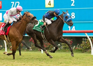 Blackjackcat holds off Vyjack to win the Del Mar Mile Handicap