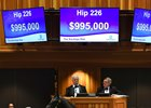 A War Front colt kept the fireworks going late when he was purchased for $995,000
