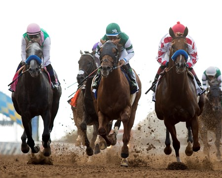 Pacific Classic, 8.19.17, first time by the wire, from left, Arrogate, Accelerate, Collected, who finished second, third and first, respectively