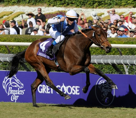 Goldikova wins the Breeders' Cup Mile at Santa Anita October 25, 2008.