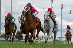 Patrick Husbands guides Conquest Panthera (pink silks) to victory in the Play the King Stakes