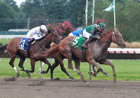 Teresa Z #5 with Nik Juarez riding won the $100,000 Monmouth Oaks at Monmouth Park in Oceanport, New Jersey on Saturday August 12, 2017.  Second was #1 Sine Wave and Albin Jimenez and third was #3 Overture and Joe Bravo.