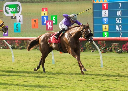 R Sunday Surprise breaks her maiden Aug. 10 at Del Mar