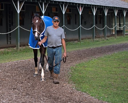 Songbird Saratoga racecourse in Saratoga Springs, N.Y. on Aug. 25, 2017