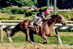 Heavenly Prize wins 1995 John A. Morris Handicap (now the Personal Ensign Stakes)