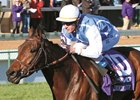Goldikova wins her third consecutive Breeders' Cup Mile in 2010