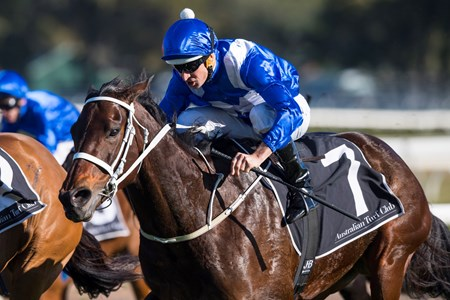 Winx wins the 2017 Warwick Stakes (G2)