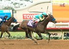 Zatter defeated stablemate St Patrick's Day in their debut Aug. 20 at Del Mar