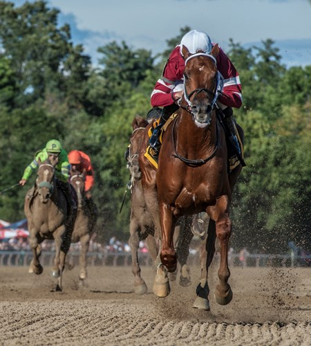 Gun Runner with jockey Florent Geroux carries a little extra weight, Cautious Giant's shoe in his tail between his rear legs as he wins the 90th running of the Whitney (G1) at the Saratoga Race Course  Saturday Aug. 5, 2017 in Saratoga Springs, N.Y.
