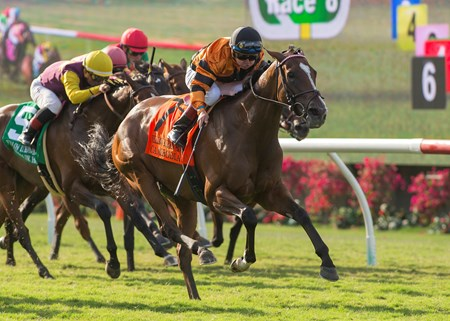 Winter Quarter Farm's Cambodia and jockey Drayden Van Dyke win the Grade II, $200,000 Yellow Ribbon Handicap, Saturday, August 5, 2017 at Del Mar Thoroughbred Club, Del Mar CA.