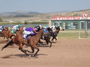 Racing at Wyoming Downs