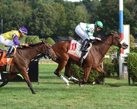 Defiant Honor wins the 2017 Riskaverse