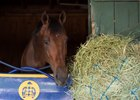 West Coast put in his first work Sept. 4 since winning the Travers