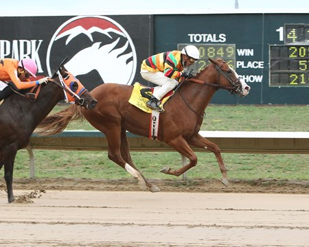 Thermistor wins the 2017 Gold Rush Futurity