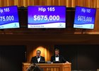 Hip 165, Tapit's highest-priced filly, sold for $675,000 during the second session of Fasig-Tipton's Saratoga sale
