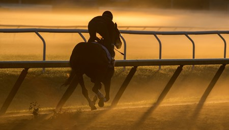Gun Runner, an expected entrant in the Whitney Stakes takes to the track at the Oklahoma Training Center for his final work in preparation for the Grade 1 Stake Sunday July 30, 2017 at the Saratoga Race Course  in Saratoga Springs, N.Y.