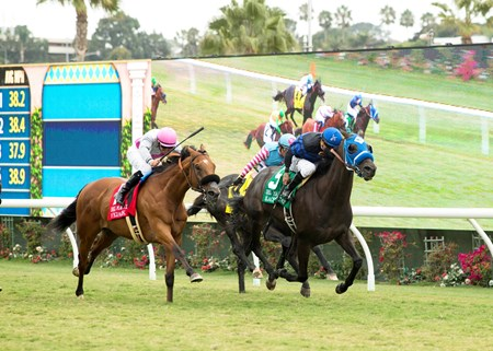 Blackjackcat wins the 2017 Del Mar Mile (G2T)