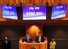 The $500,000 paid for a Cairo Prince colt set a record for the sale's highest price
