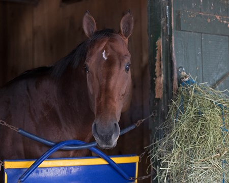 Drefong