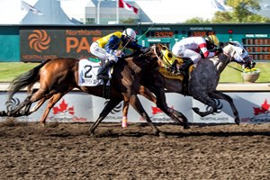 Chief Know It All wins the Canadian Derby