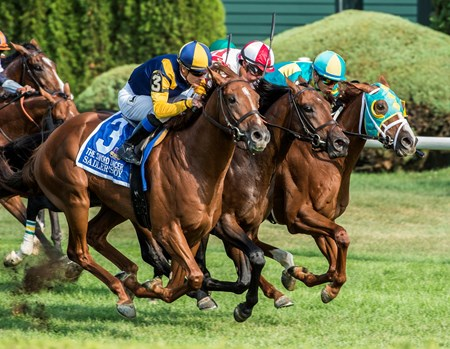 Sadler's Joy with jockey Julien Leparoux comes up on the outside to win the 43rd running of The Sword Dance at the Saratoga Race Course in Saratoga Springs, N.Y.