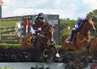 Diplomat takes a fence in the New York Turf Writers Cup Handicap