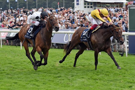 25.08.2017, York, GB, Marsha (left) with Luke Morris up wins the Nunthorpe Stakes. Photo FRANK SORGE/Racingfotos.com