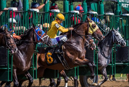 Horses break from the gate at Saratoga Race Course