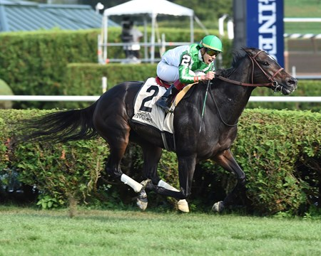 Bar of Gold wins the 2017 Yaddo Stakes