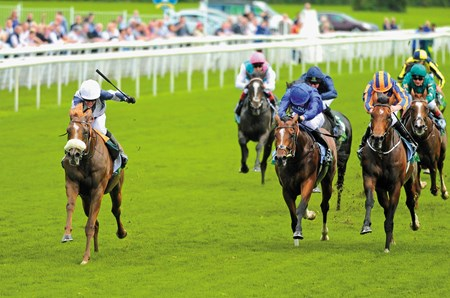 YORK 23-8-2017. Juddmonte International Stakes.