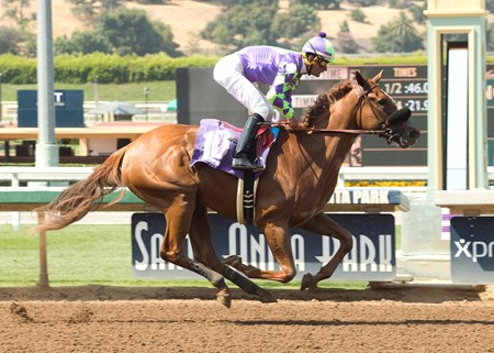 Spectator - Maiden Win, Santa Anita - June 23, 2017