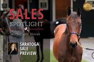 Fasig-Tipton Saratoga Sale Preview