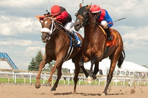 Melmich (outside) gets a nose in front of Are You Kidding Me in the 2017 Seagram Cup at Woodbine