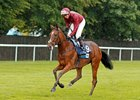 To Eternity after winning the British Stallion Studs EBF Chalice Stakes at Newmarket