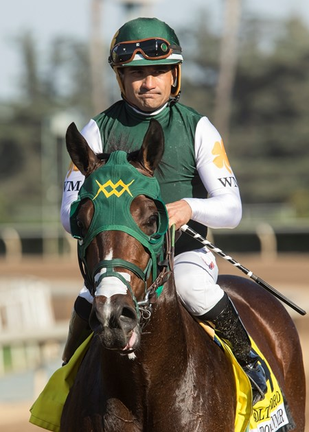 Jockey Corey Nakatani guides Bolt d'Oro to the winner's circle after their victory in the G1, $300,000 FrontRunner Stakes, Saturday, September 30, 2017 at Santa Anita Park, Arcadia CA.