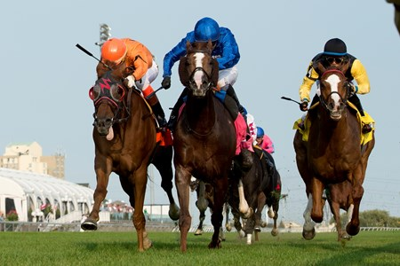Johnny Bear wins the Northern Dancer Stakes (GIT) at Woodbine.