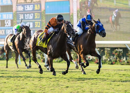 Winter Quarter Farm's Cambodia and jockey Drayden Van Dyke, left, outleg Goodyearforroses (Corey Nakatani), right, to win the G2, $200,000 John C. Mabee Stakes, Saturday, September 2, 2017 at Del Mar Thoroughbred Club, Del Mar CA.