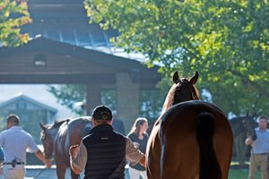 The Keeneland September sale produced record average and median prices