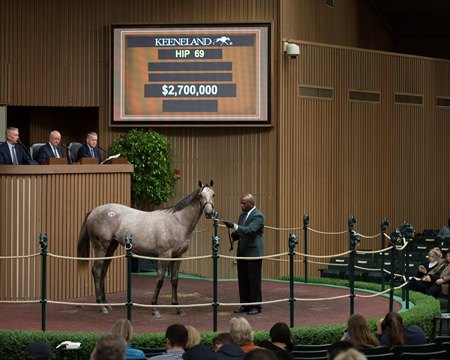 Hip 69, a Tapit filly, sells for $2.7 million to top the Book 1 session Sept. 11
