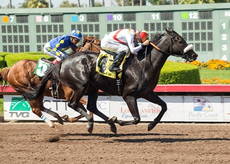 Soi Phet wins the 2017 E.B. Johnston Stakes