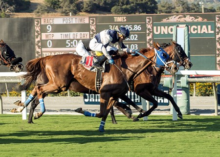 Kretz Racing's Mr. Roary and jockey Tyler Conner, outside, overpower Tribalist (Kent Desormeaux), inside, and Guns Loaded (no rider), right, to win the G3, $100,000 Eddie D. Stakes, Friday, September 29, 2017 at Santa Anita Park, Arcadia CA.