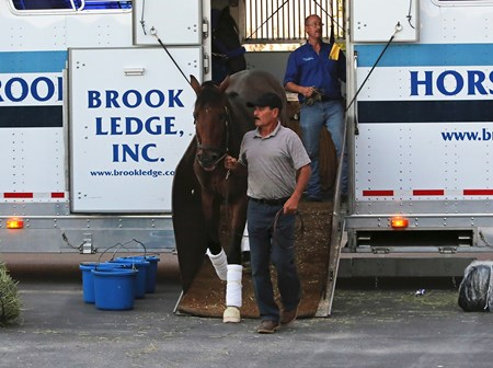 West Coast is led off the van at Parx Racing in Bensalem, Pennsylvania on September 20, 2017