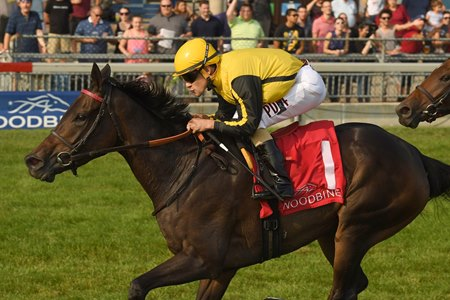 Junior Alvarado guides Quidura to victory in the 2017 Canadian Stakes at Woodbine Racetrack.
