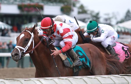 Bal Harbour #9 with Chris DeCarlo riding won the Sapling Stakes at Monmouth Park in Oceanport, New Jersey on Saturday September 2, 2017.